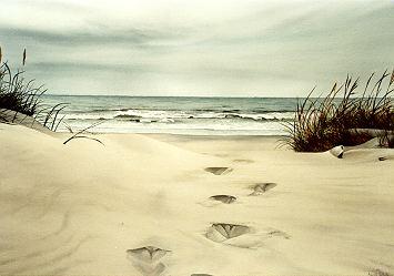 http://www.naute.com/images/footprints.jpg