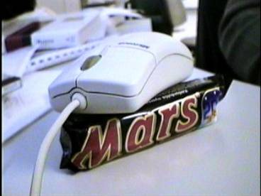 Mouse Found On Mars!
