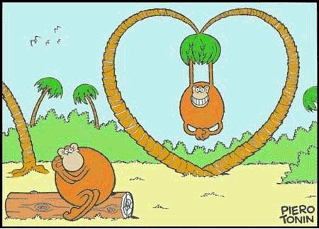 singe amoureux/monkeylove!