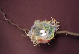 Résultats de recherche d'images pour «colibri abeille nid Taille réelle»